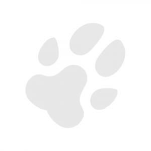 Paw print avatar