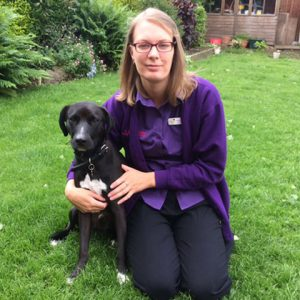 Amy Brookes, patient care assistant at YourVets